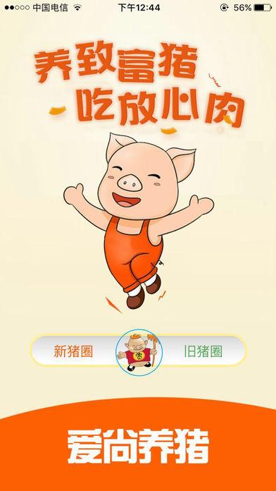 爱尚养猪截图1