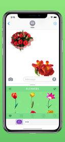 花卉截图1