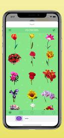花卉截图2