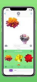 花卉截图3