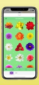 花卉截图4