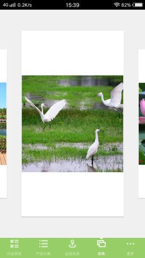 河北湿地种植养殖开发截图5