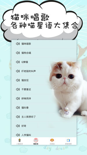 猫语翻译器截图2