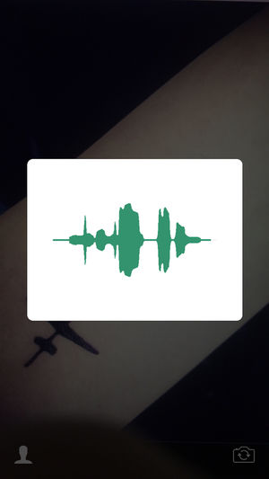 纹声截图1