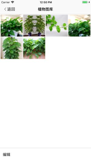 植物相机截图3
