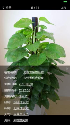 植物相机截图5