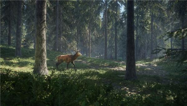 猎人荒野的呼唤截图