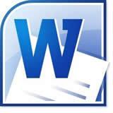 WPS word 2010