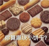 你算哪块小饼干什么意思图片
