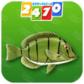 看图识鱼类2TV版