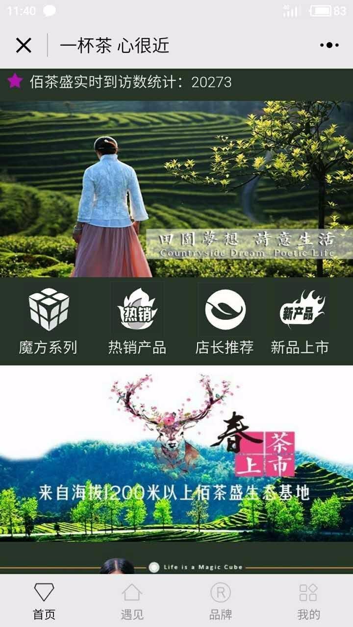 佰茶盛100TEAS品牌茶叶店小程序