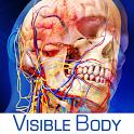 人�w〗解剖�W�D�V:Human Anatomy Atlas