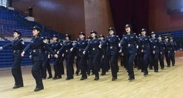 公安交警队伍正规化建设管理工作规范 绿色版
