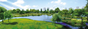 河道环境综合治理工作总结