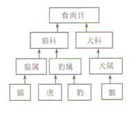 生物题库管理系统