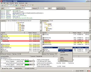 FileZilla Server段首LOGO