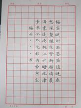 小学生硬笔书法比赛活动方案范文