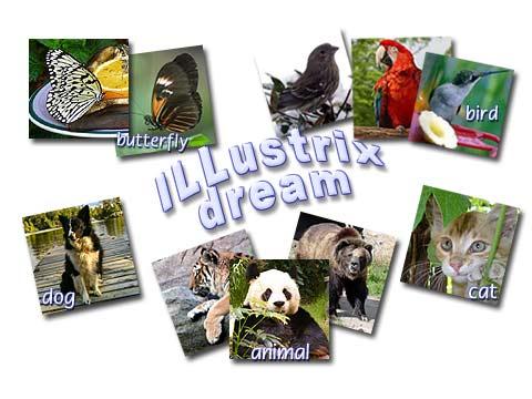 Absolutist.Illustrix.Dream.Birds