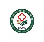 大盛新型农村合作医疗信息管理系统(新农合)