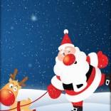 3D圣诞老人 3D Santa Quest 240x320 JavaLOGO