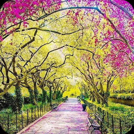 高清自然風景壁紙