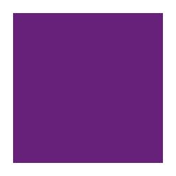 Wise for Visual Studio .NETLOGO