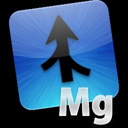 AttributeMagic Standard