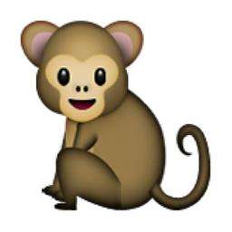 Copy Monkey